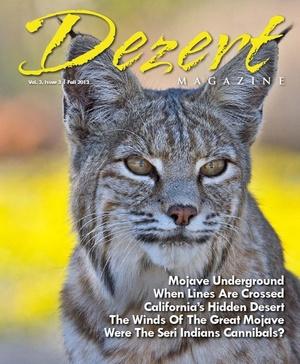 Dezert magazine Sum/Fall2013