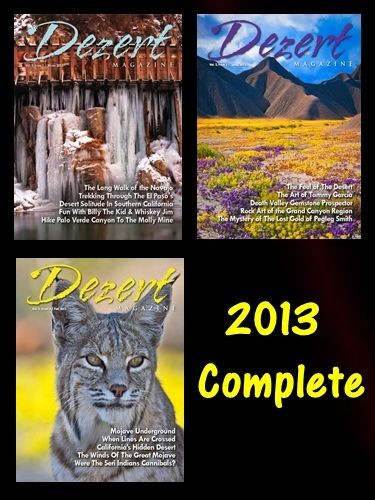 2013 Complete ( 2 issues & 1 double issue )