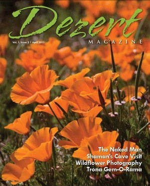 Dezert magazine April 2011