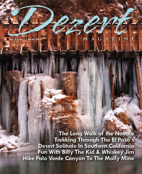 Dezert magazine Winter 2013