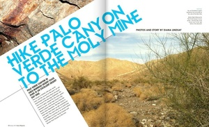 Hike Palo Verde Canyon to Moly Mine