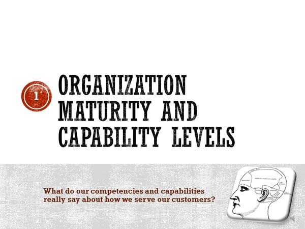 Organization Development:  Organization Maturity and Capability Levels