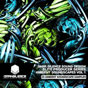 DARK SILENCE - ELITE SERIES - AMBIENT SOUNDSCAPES VOLUME 1