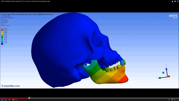 ANSYS Workbench 15.0 MECHDAT file and 3D model for skull chewing gum
