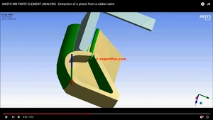 ANSYS MECHDAT file and 3D model for piston and rubber valve
