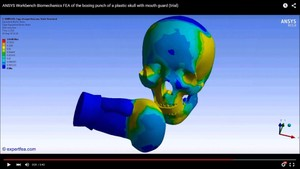 MECHDAT file and 3D model for skull with mouthguard