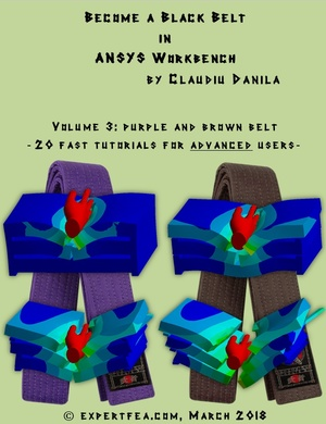 3D models only, for Become a Black Belt in ANSYS Workbench, Volume 3