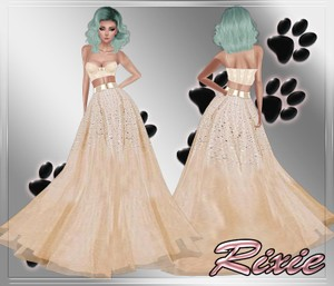 Alyce Gown