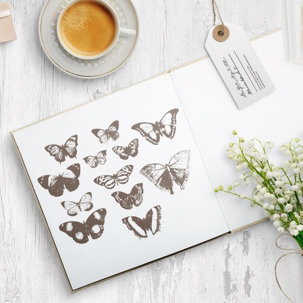 Butterfly vector eps