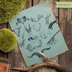 horns and deer vector eps