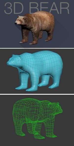 3D BEAR .3ds .fbx
