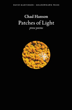 Patches of Light (ePub3)