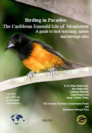 Birding in Paradise: The Caribbean Emerald Isle of Montserrat