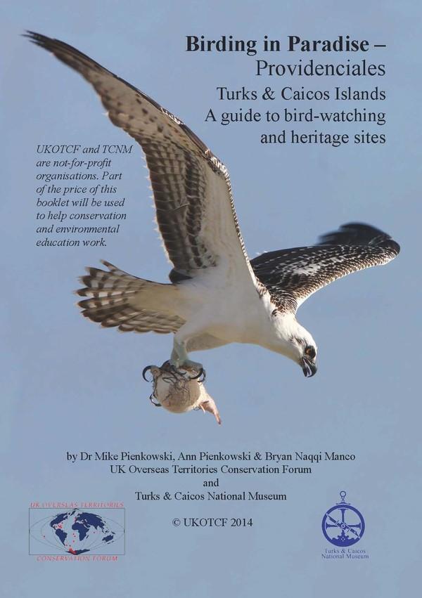 Birding in Paradise - Providenciales