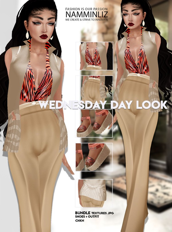 Wednesday day look Outfit+Shoes JPG Textures CHKN