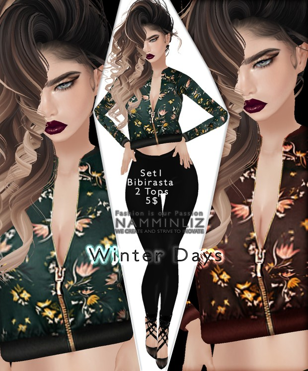 Full Winter days Set imvu