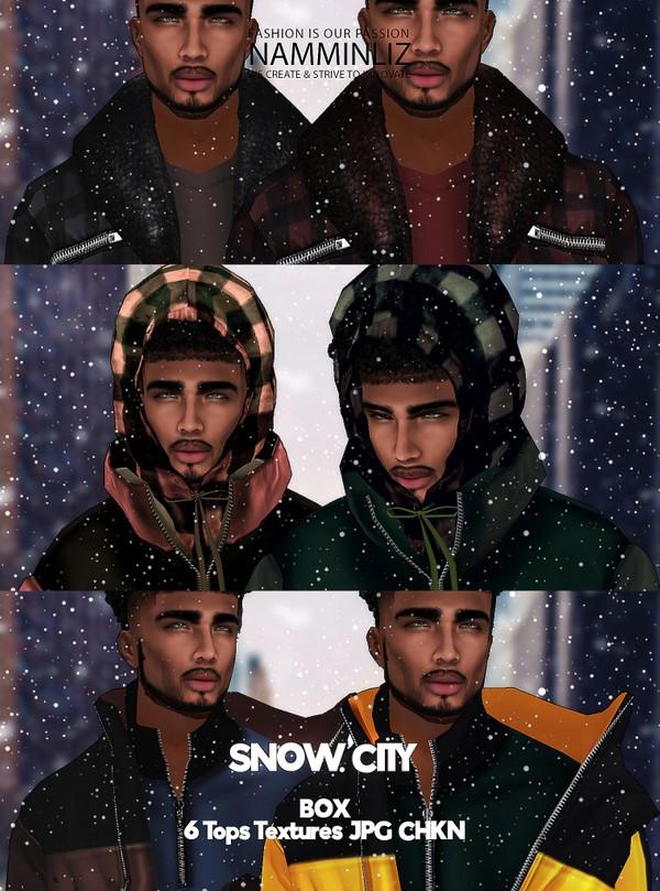 Snow City Box Textures JPG CHKN 6 Tops