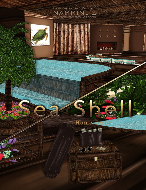 Sea Shell Home decor 23 Textures PNG