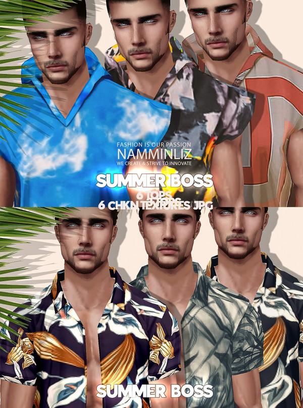 Summer Boss 6 Tops Box Textures JPG 6 CHKN