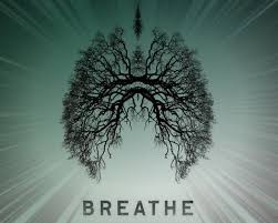 Day 2 Breath Meditation ; Circular Breath (8mins)