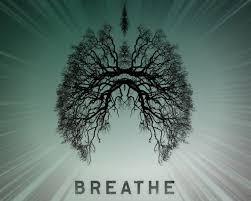 Day 2 Breath Meditation ; Circular Breath (8mins)