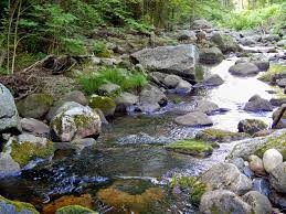 MEDITATION: Relaxation Creek Meditation