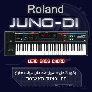 Roland - Juno Di  Wave Sample
