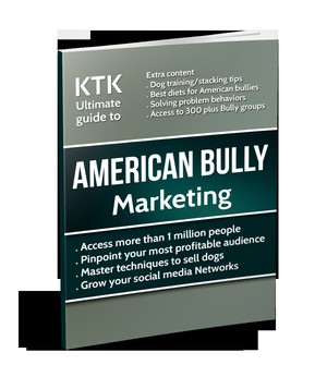American Bully Marketing Guide