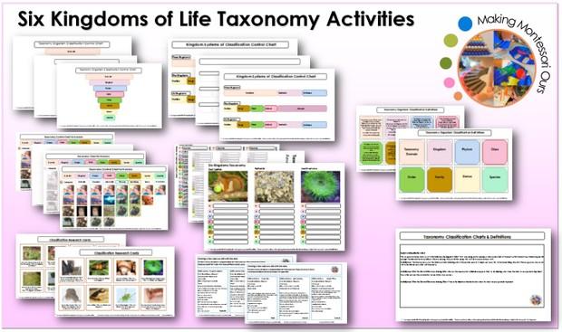 Six Kingdoms Taxonomy & Labels Printable Package