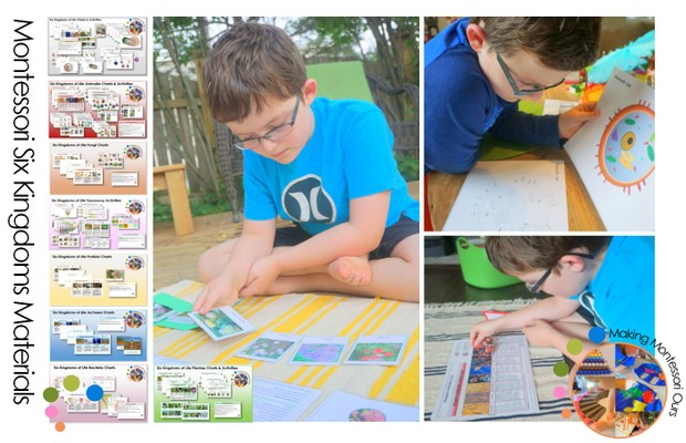 Six Kingdoms of Life Charts, Materials & Material Labels Printable Package