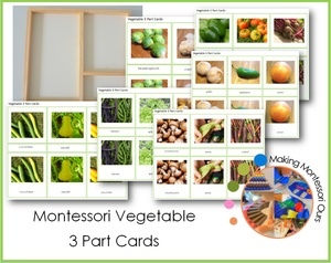 Montessori Vegetable 3 Part Cards