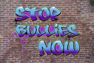 Stop Bullies NOW! Video workshop.