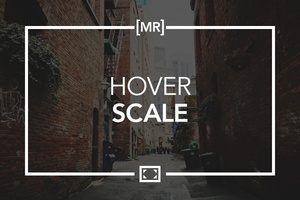 Hover Scale
