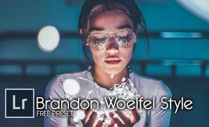 Brandon Woelfel Style - FREE PRESET