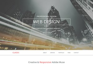 Landing Page - Classic Professional disign