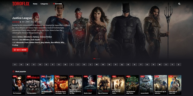 Toroflix Wordpress Theme (Netflix Clone)
