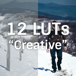 Pack 12 LUTs