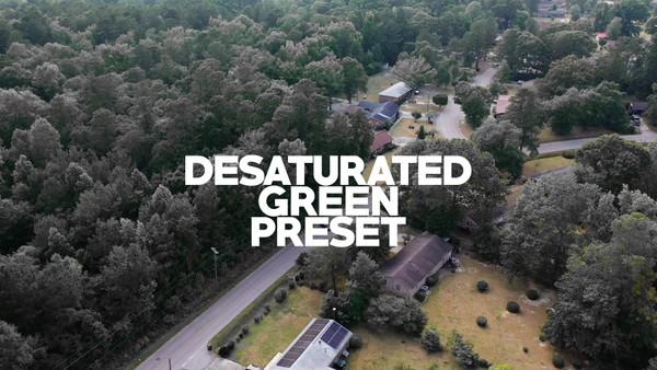 Desaturated Green Preset