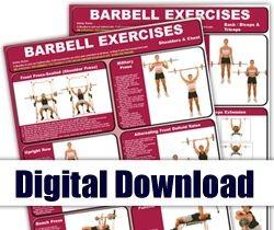Digital - Barbell Mini-Posters