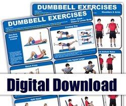 Digital - Dumbbell Mini-Posters