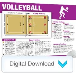 Digital - Sports Mini Poster Volleyball