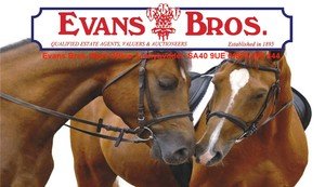 Evans Bros Horse Sale Catalogue November 2015