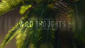 Wild Thoughts Project Files