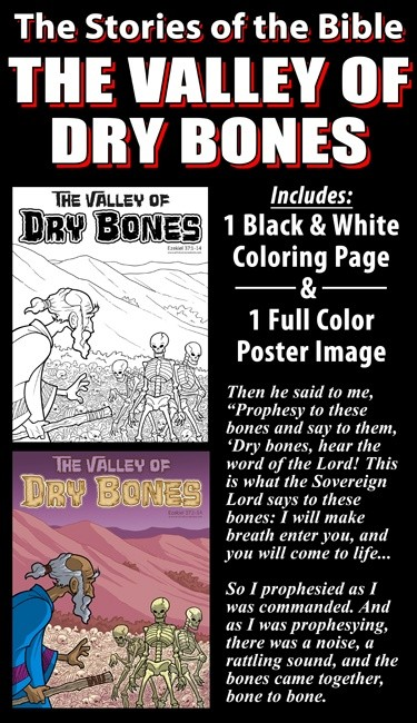The Stories Of The Bible The Valley Of Dry Bones
