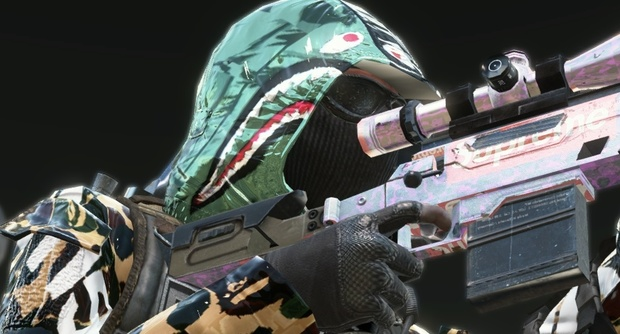 Too Much Project Files + Skins/Camos (for bo2)