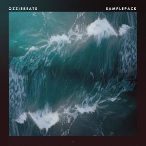 OZZIE BEATS | Sample Pack [WAV Samples]