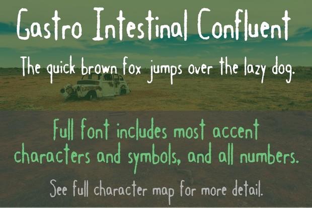Gastro Intestinal Confluent Font - General Commercial License