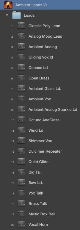 AMBIENT LEADS V1