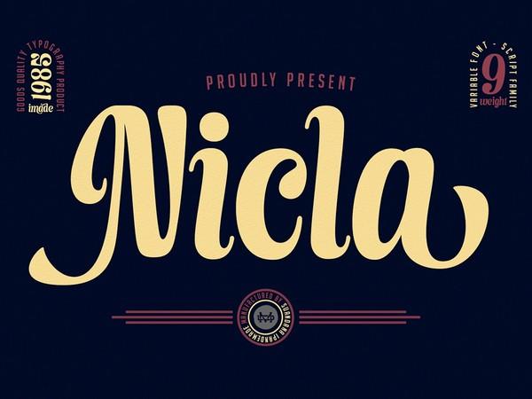 Nicla - Beautiful Script Family