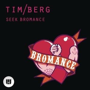 Tim Berg - Seek Bromance (Full FL Studio Remake)